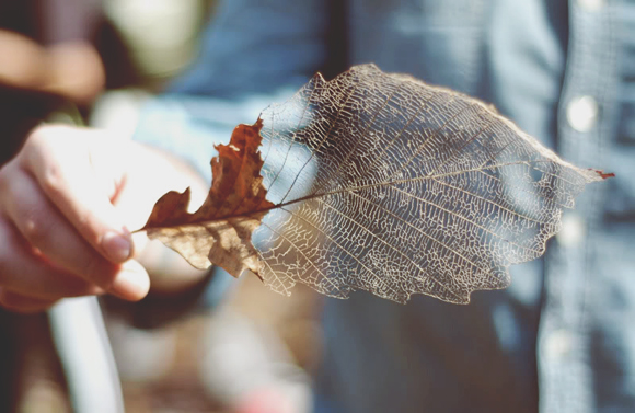 To Do: Create An Autumn Bucket List
