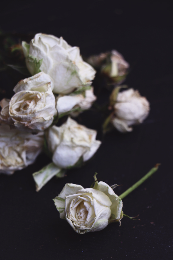 Two Ways To Preserve Flowers
