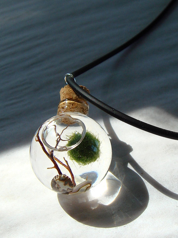 Orb Marimo Moss Ball Mini Ecosphere Terrarium Necklace by MyZen