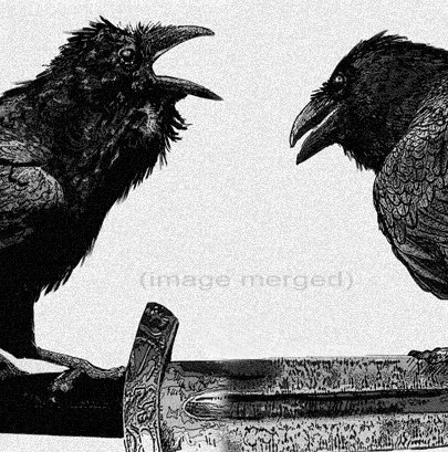 Raven, Odin artwork, Raven, crow, Huginn and Muninn, Etching, assorted colors, 5 inch x 14 inch 2013 by RAVENSTAMPS