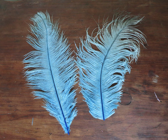 Victorian Millinery Hat Feathers Plumes – 2 Blue feathers 9 & 11 inches – Vintage by dandelionvintage